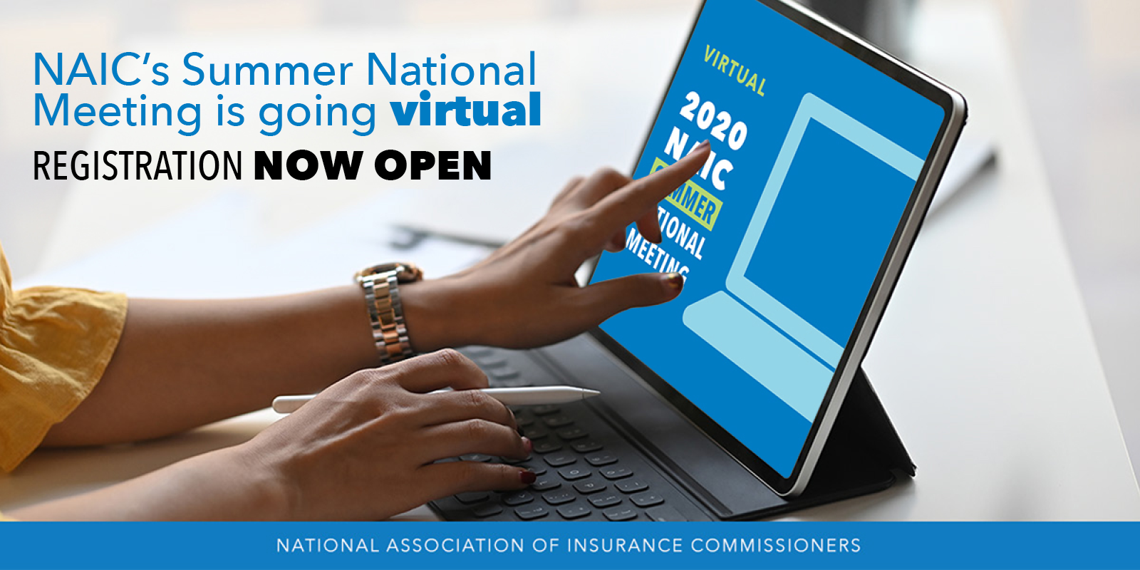 NAIC Virtual Summer National Meeting