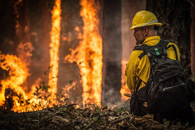 Firefighter in front of forest fire